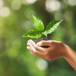 Propane: The Eco-friendly fuel
